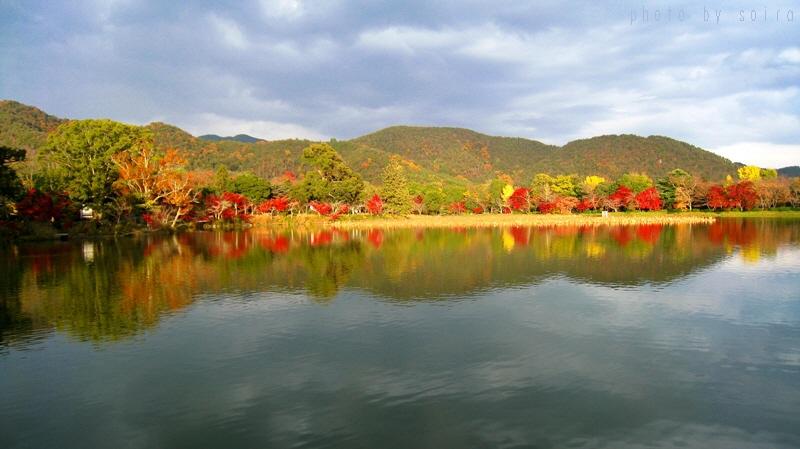 大沢池と紅葉1