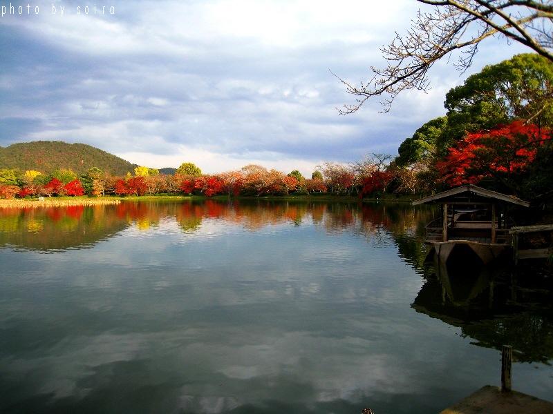 大沢池と紅葉2