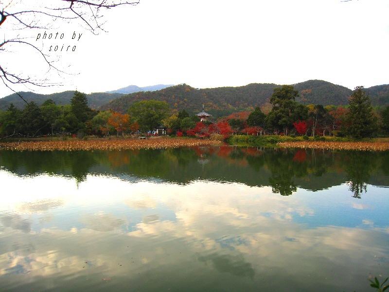 大沢池と心経宝塔