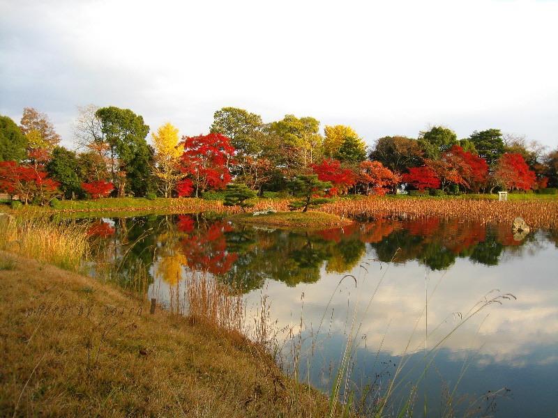 大沢池と菊ヶ島