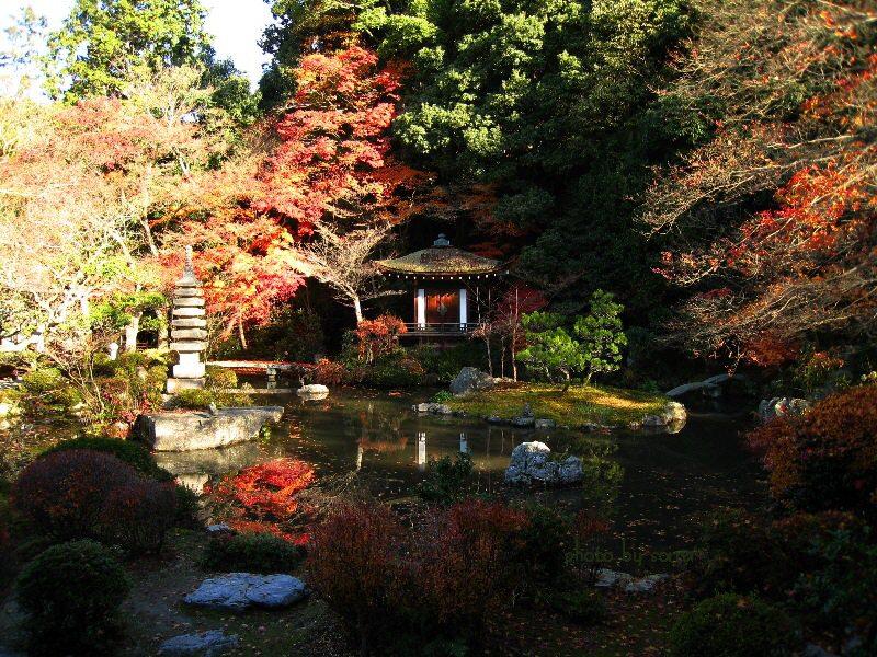 晩翠園の紅葉2