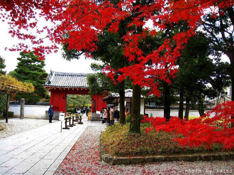 表門と紅葉