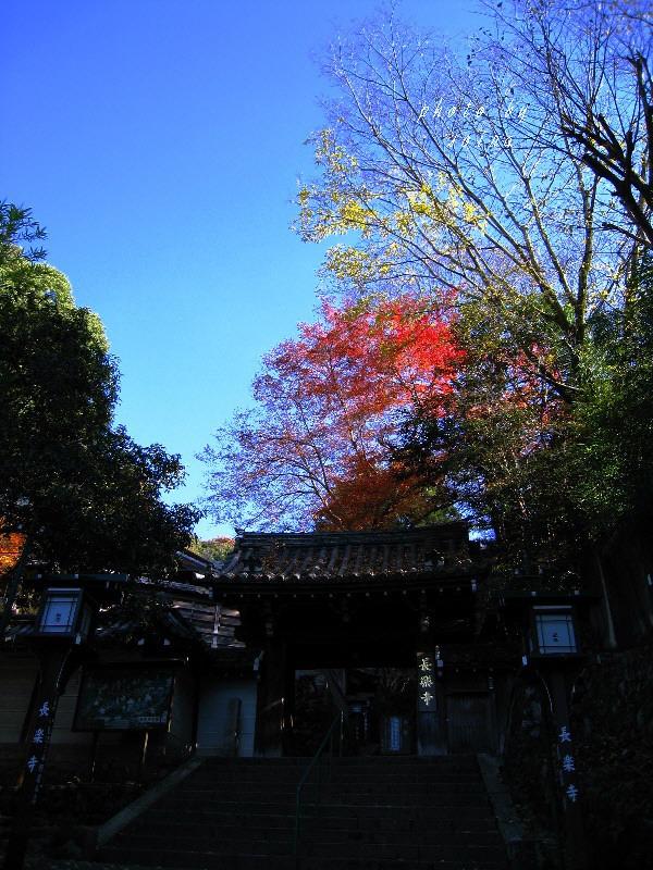 長楽寺・山門