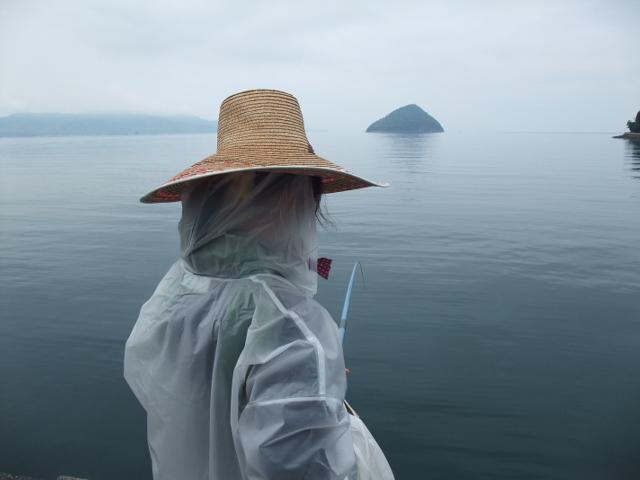 釣りの景色