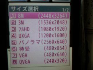 DSC00008_20081223105114.jpg