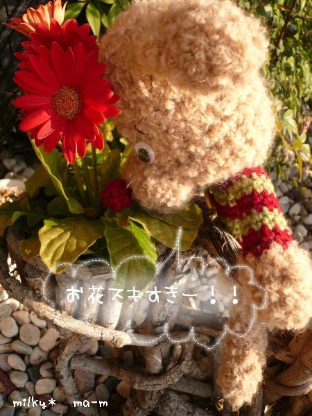 10_20090207001853.jpg