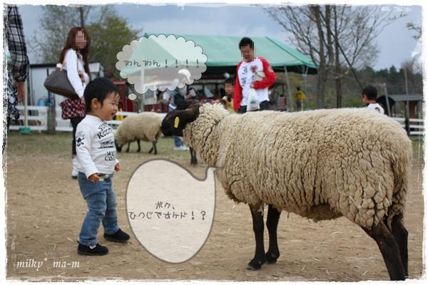 10_20090511212557.jpg