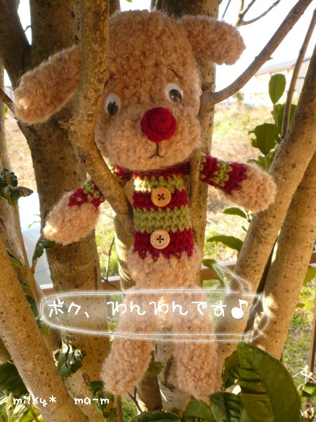 8_20090207001801.jpg