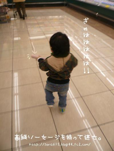 a8_20081214123236.jpg