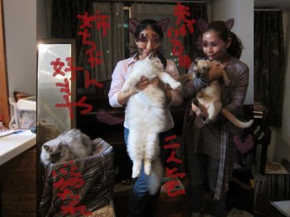 迪ォ繧ィ繧ォ_convert_20111026015228