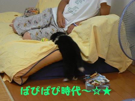 dj_20081201220635.jpg