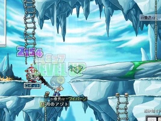 Maple0002098.jpg