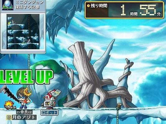 Maple000580.jpg