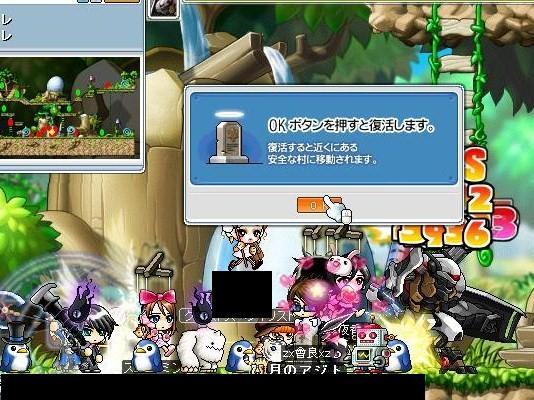 Maple090708_1911396543.jpg