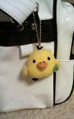 """名前は""""黄色い鳥""""だそうです"""