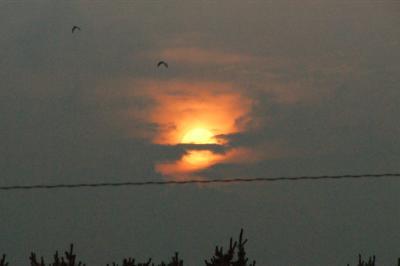 一宮海岸の夕日
