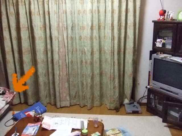 2008_1125_221139.jpg