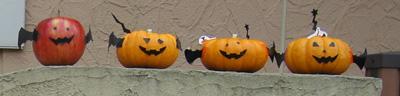 かぼちゃ達