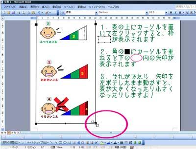 word_2003画面