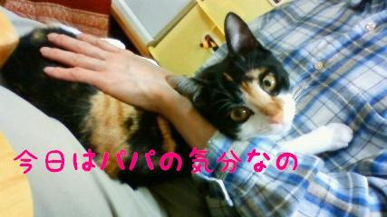 20090322-2.jpg