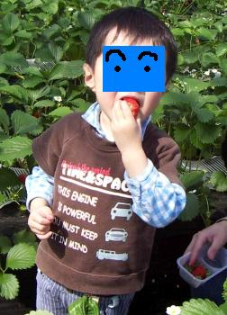 20090329-8_1.jpg
