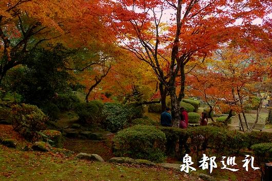 20081116seikei04_20081203210133.jpg