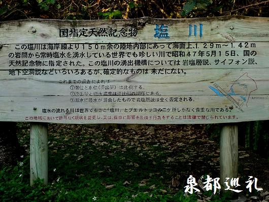 20090221siokawa01.jpg