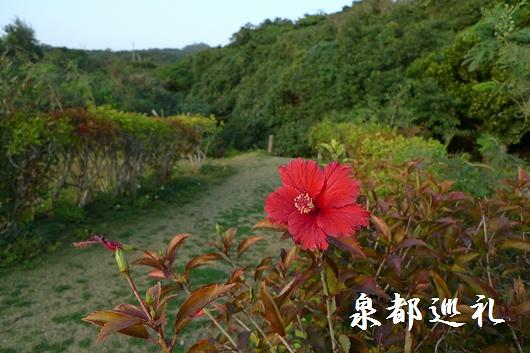 20090221siokawa04.jpg