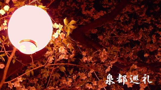 20090320maizurukouen02.jpg