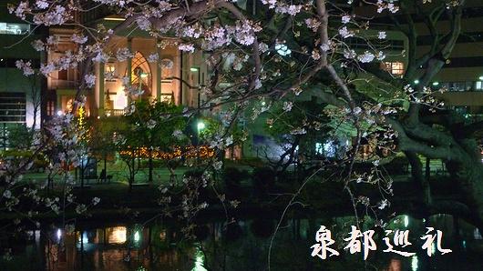 20090320maizurukouen04.jpg