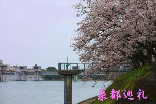 20090329kawakamikyo04_20090427211422.jpg
