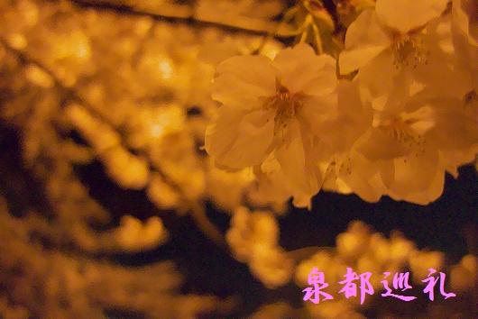20090331nisikouen02.jpg