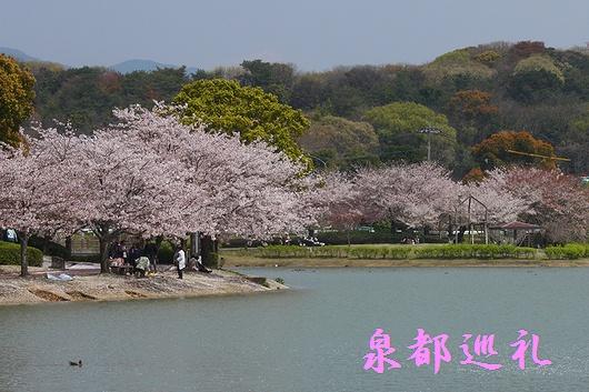 20090405kayoicho-park01.jpg