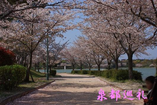 20090405kayoicho-park02.jpg