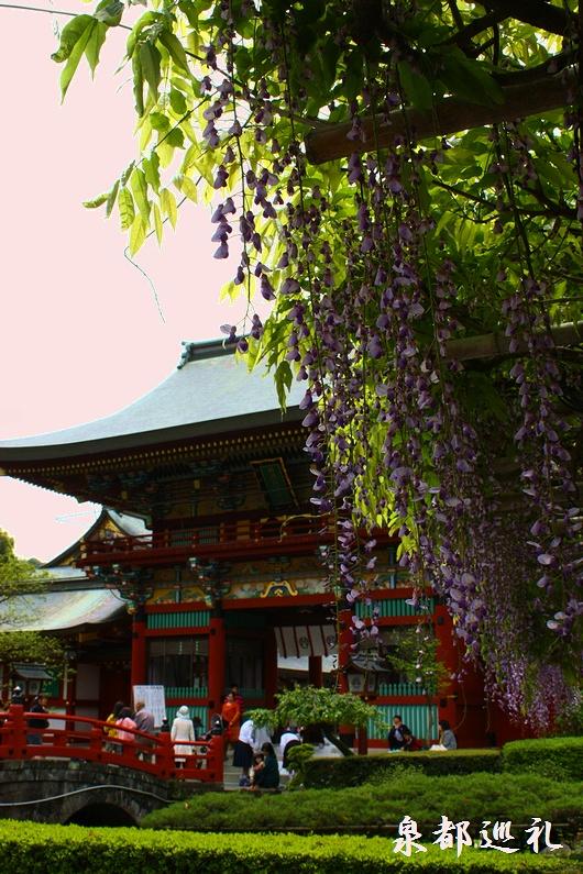 20090426yutokuinari003.jpg