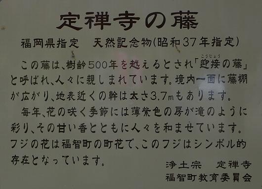 20090427jozenji06.jpg