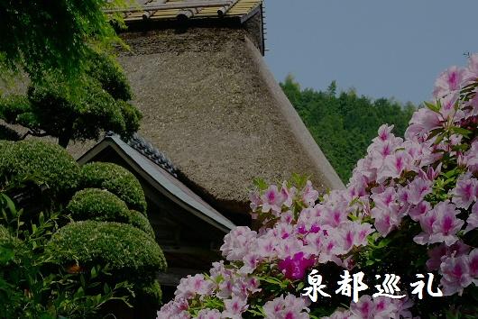 20090429daikozenji08_20090515215758.jpg