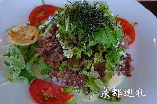 20090614shino01.jpg