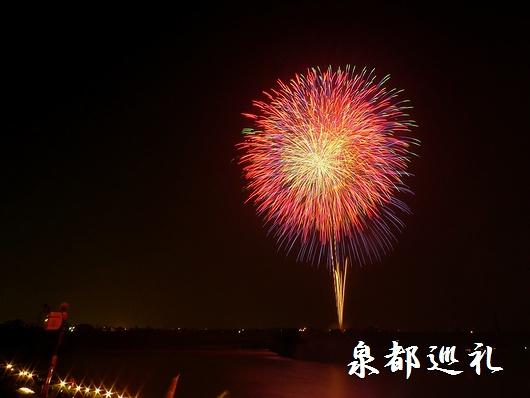 20090722miyama_fireflower02.jpg