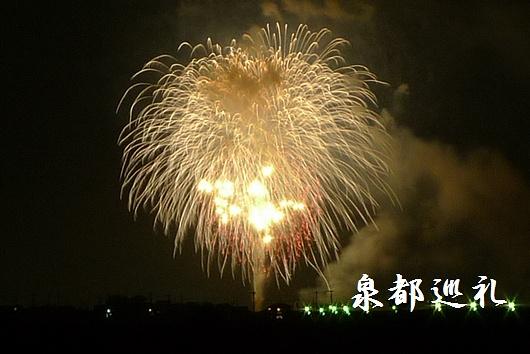 20090808okawa-fireflower02.jpg