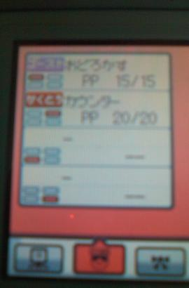SN3F0047.jpg