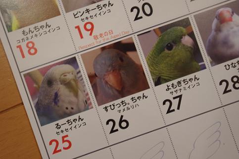 CAPカレンダー。