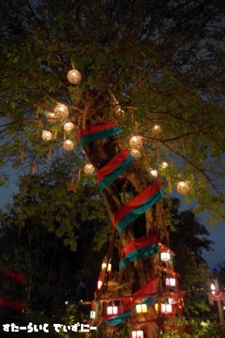 111123LostRiverDelta-tree.jpg