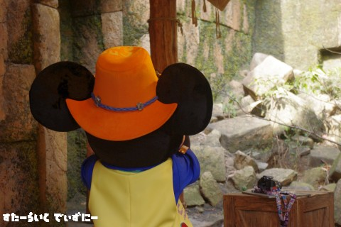 120119Trail-mickey.jpg