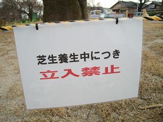 芝生養成中_2009-03-28