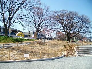 芝生の養成と賀茂川_2009-03-30