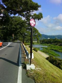 加茂街道に立つバス停_2009-08-03A