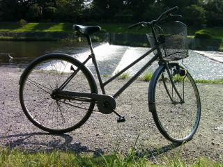 朝のサイクリング_2009-08-03