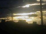 ヒカリトカゲ_2009-10-22MB