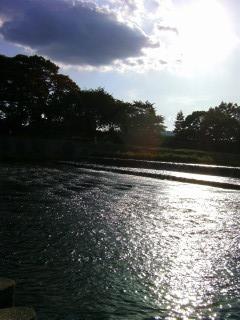 太陽の方を向いて_2009-06-28